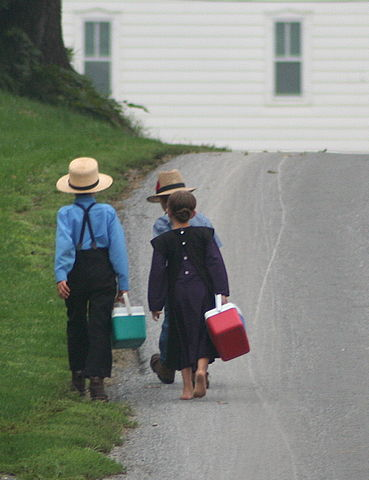 369px-Amish_On_the_way_to_school_by_Gadjoboy2